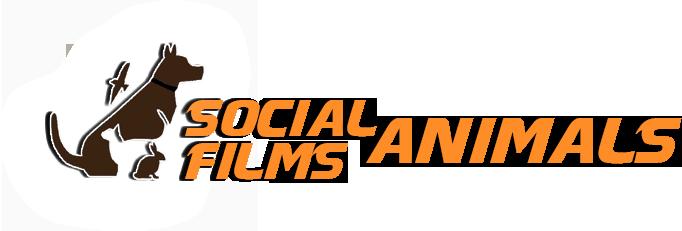 socialanimalsfilm